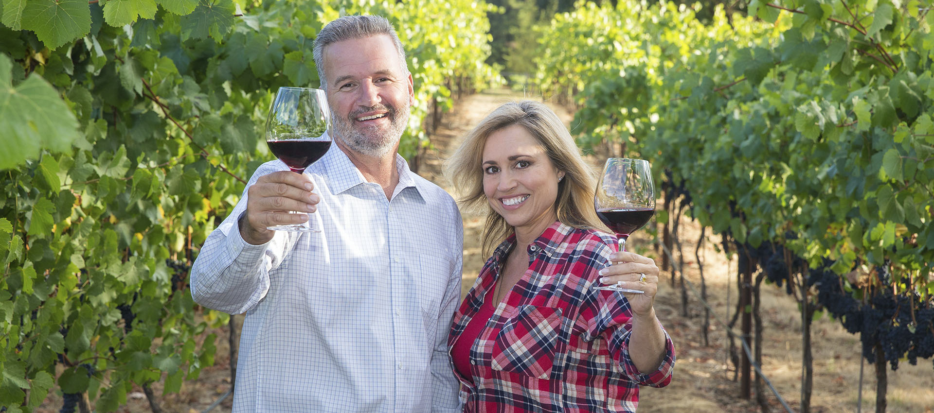 Descubre la cultura del vino